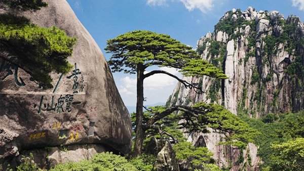 【5月】G2线 大美黄山、水墨宏村、秀水千岛湖、宋代老街双高五天团
