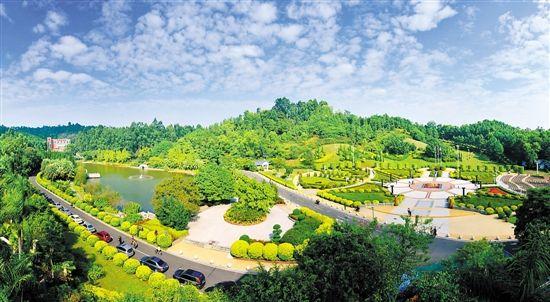【9月】M16线 三水荷花世界+三水森林公园 两日游(纯玩无自费)