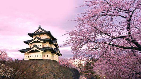 【2020年2-3月】【璀璨东京】日本本州尊享六日之旅 深圳往返