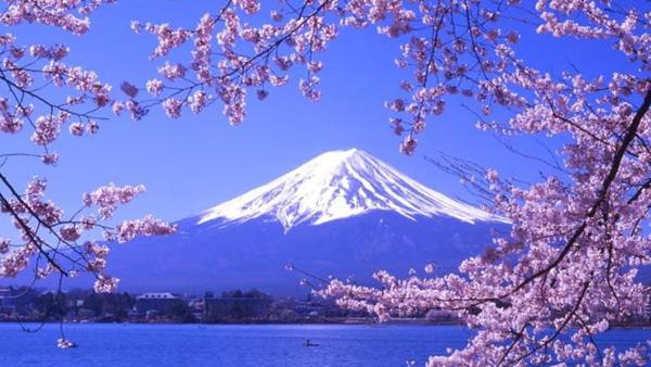 【3-4月】日本樱您心动6天之旅