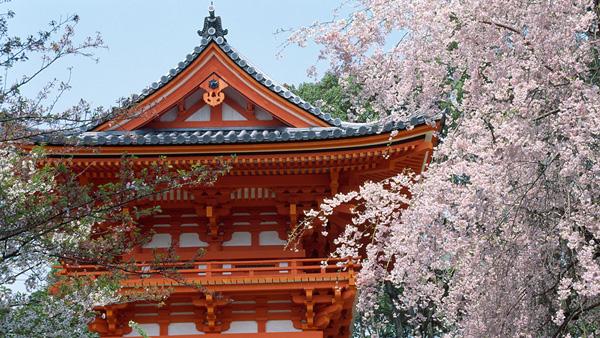 【7-8月暑假】日本本州双古都和风六日游
