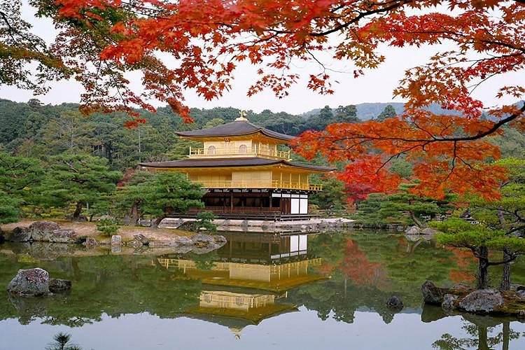 【11-12月】日本本州魅力双古都尊享六日游