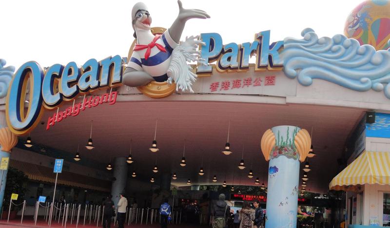 香港純玩1日海洋線 | 海洋公園+船游維港+金紫荊廣場